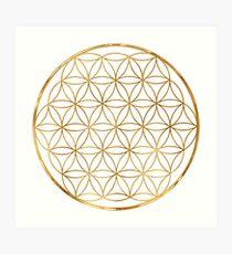 Flower of Life, sacred circle geometry Art Print