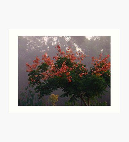 """Golden Rain Tree"" Art Print"