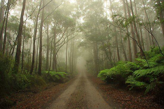 Mysterious Road by Joel  Haldane