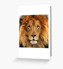 Red Lion Lannister House 4 Greeting Card