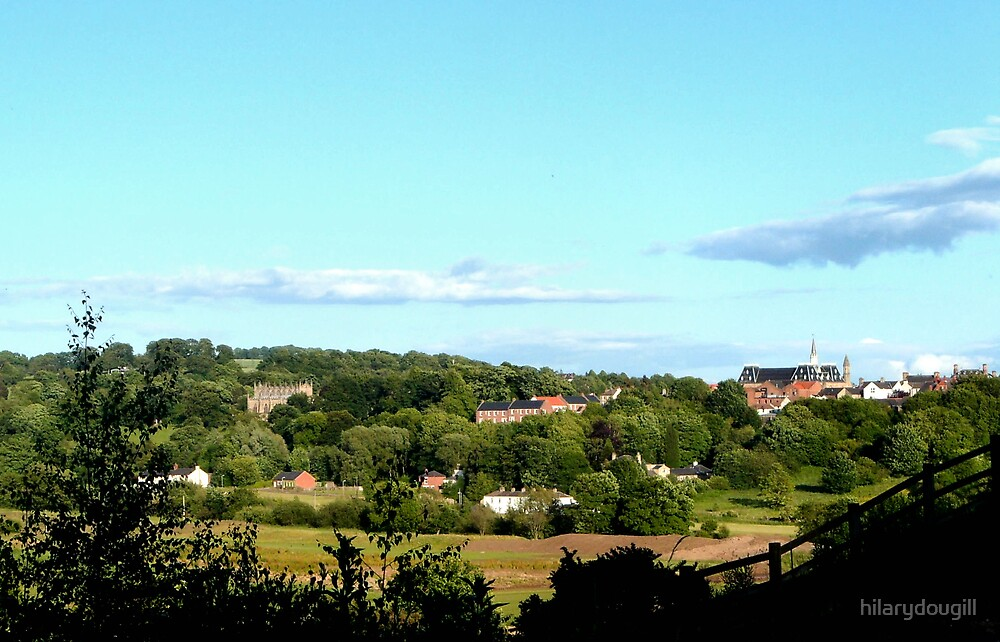 Bishop Auckland from the walk by hilarydougill