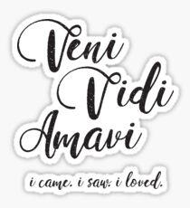 Veni Vidi Amavi Sticker