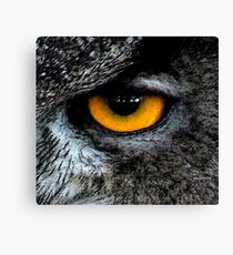 The Great Horned Eye. Canvas Print