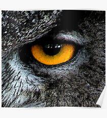 The Great Horned Eye. Poster