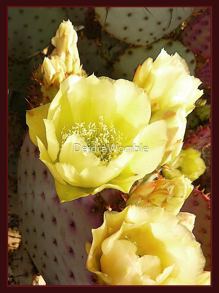 Arizona Spring by DeidraWomble