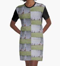 Ducks Graphic T-Shirt Dress