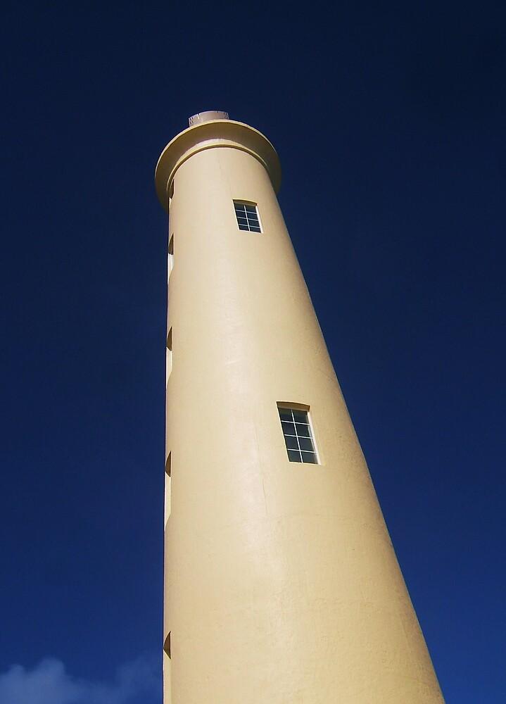 Lighthouse by Diana Forgione
