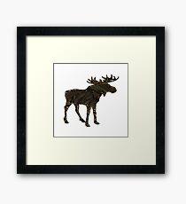 Shadow Moose  Framed Print