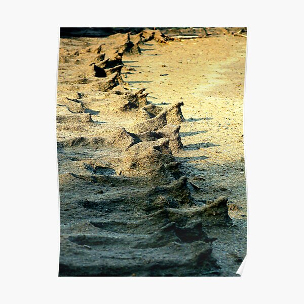 Sand People Poster