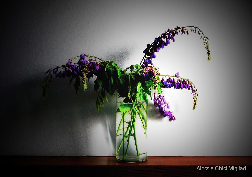 A violet swan song (un canto del cigno viola) by Alessia Ghisi Migliari