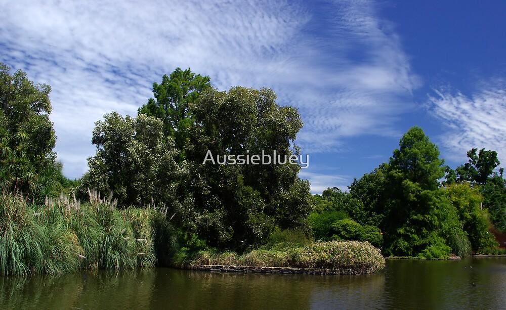 Botanic Garden Lake. by Aussiebluey
