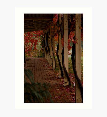 Vine Lines Art Print