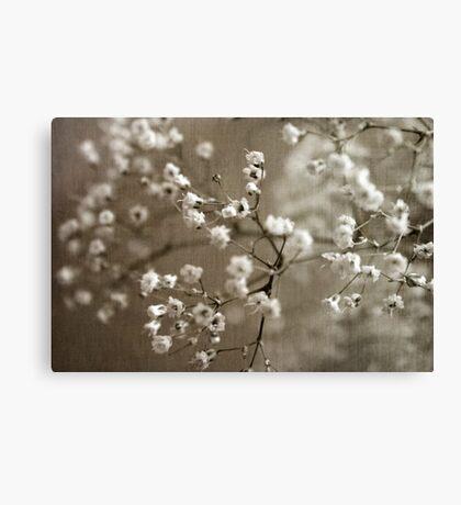 Soft Breath Canvas Print
