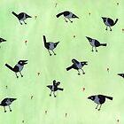 «Urracas» de Sophie Corrigan
