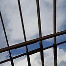 Sky Lines by Scott Mitchell