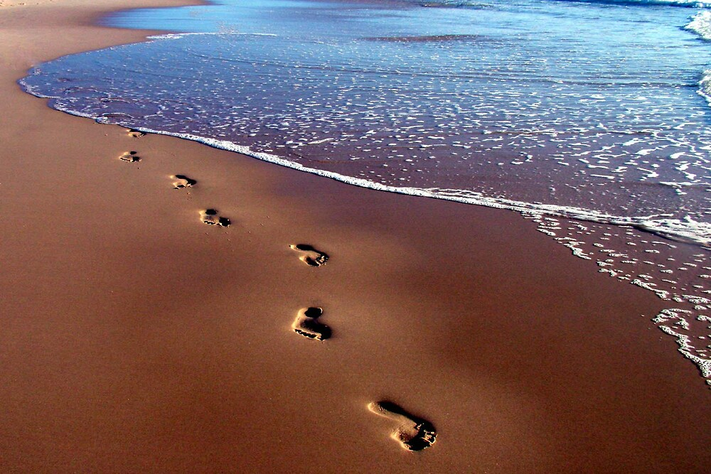 leave only footprints by cook