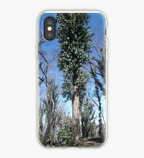Regrowth after fire iPhone Case