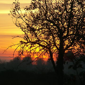 Sunset Norton 1 by Jdn1000