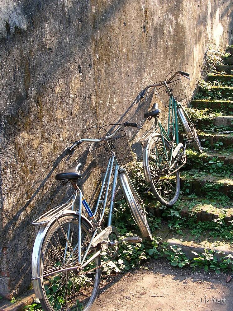 Bicycles by Elizabeth Watt