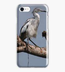 little blue heron pooping iPhone Case/Skin