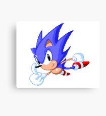Sonic Cool Canvas Print