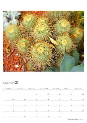 2009 Calendar - December by Maximus
