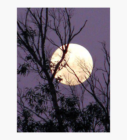 Moon in Gemini Photographic Print