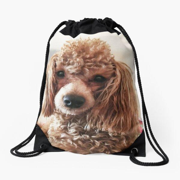 Raffie Drawstring Bag