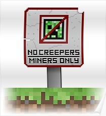 NO CREEPERS ALLOWED! Poster