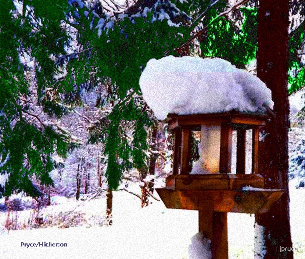Snowy Bird Feeder by jpryce