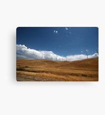 Dry Dry Dry Canvas Print