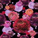 Ranunculus Power by theminx1