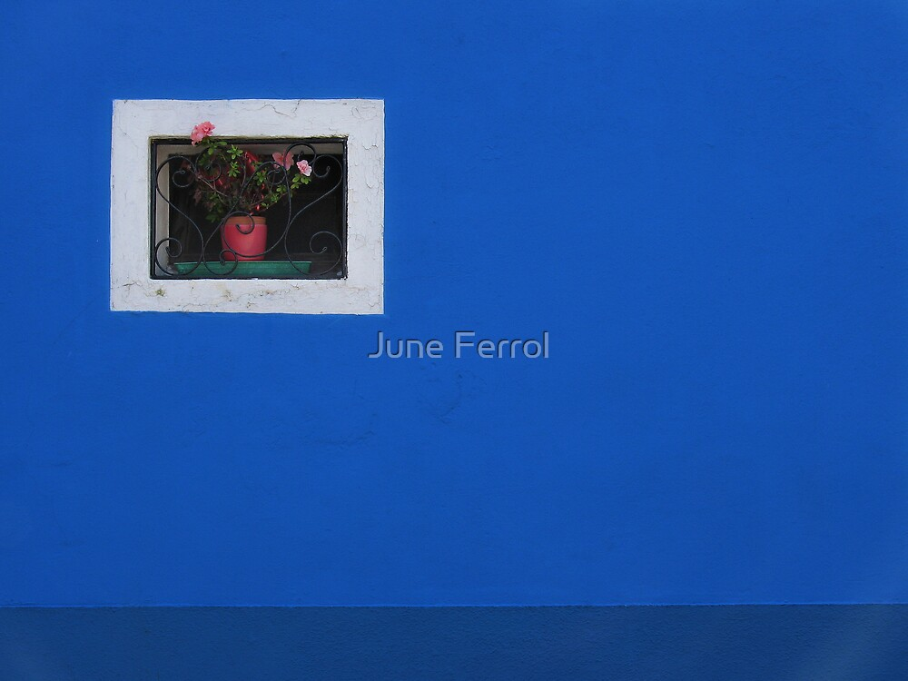 THE BLUE WALL by June Ferrol