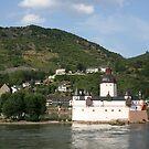 Burg Pfalz by BigAl1
