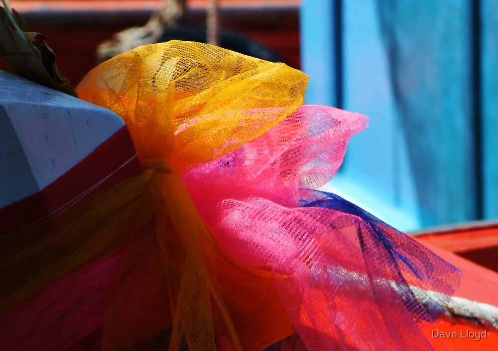 Lucky Ribbons by Dave Lloyd