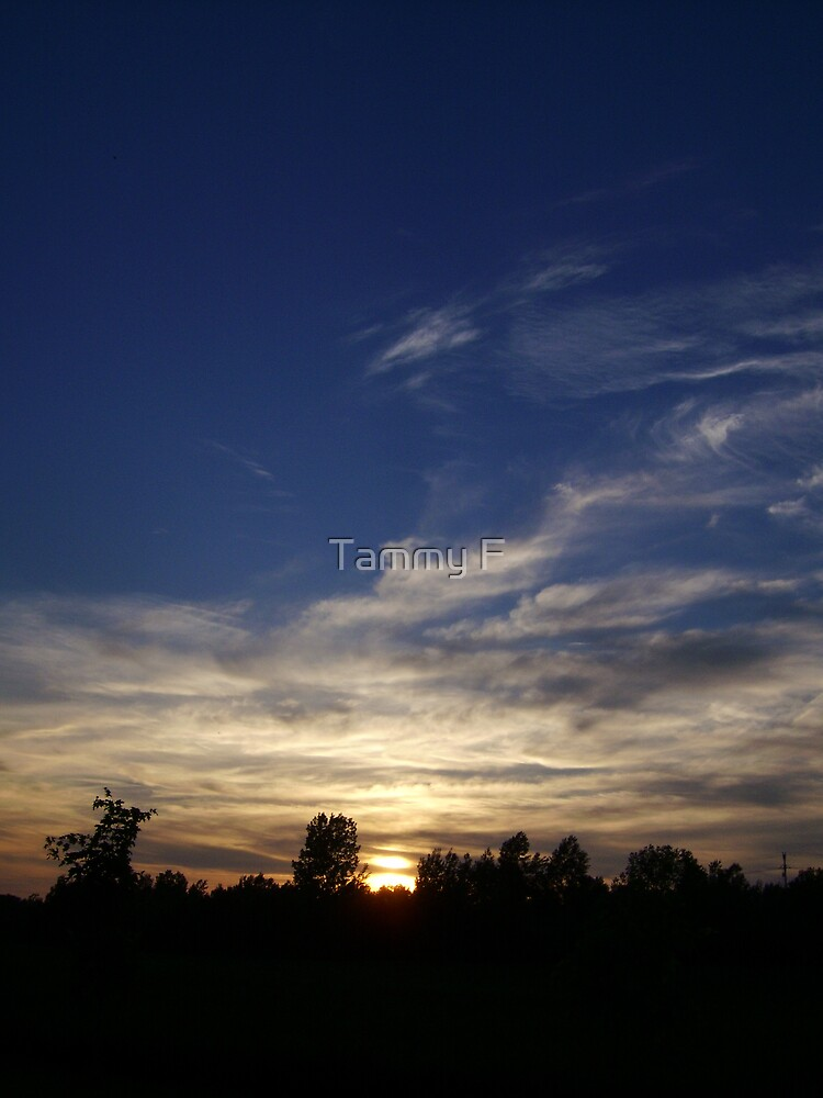 Watercolor In The Sky by Tammy F