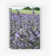 Flying Bumble Bee Spiral Notebook