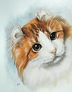 American Curl by BarbBarcikKeith