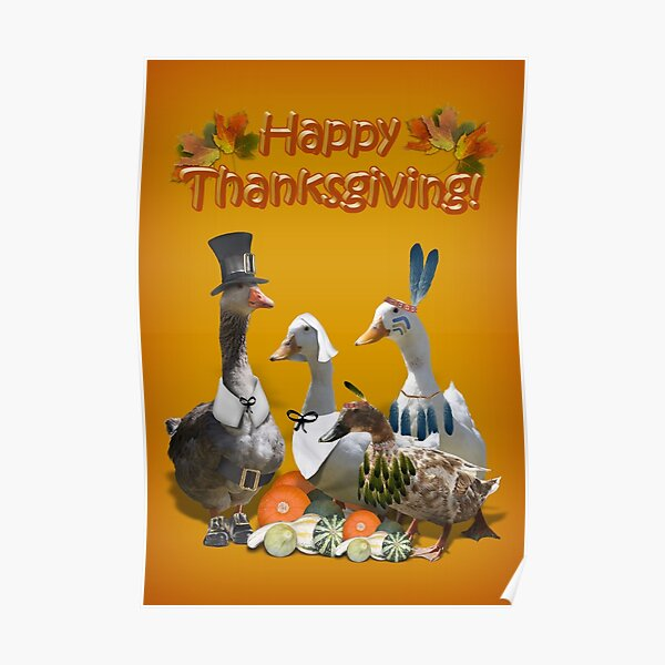 Happy Thanksgiving from Ducks and Geese! Poster