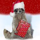 Christmas Bandit Raccoon  by Gravityx9