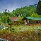 Ta'an Kwäch'än Heritage site on Lake Laberge by Yukondick