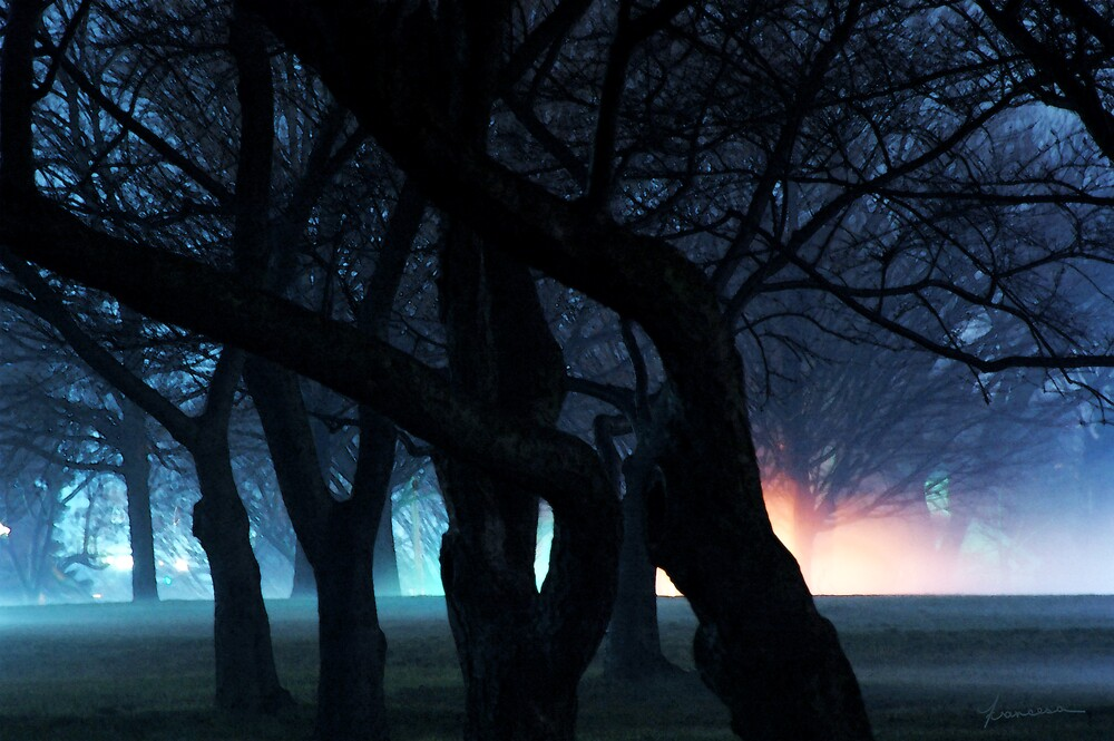 Night Fog in the City Park by Francesa