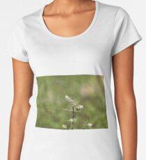 Flowers of a peppermint plant, Mentha x piperita Women's Premium T-Shirt