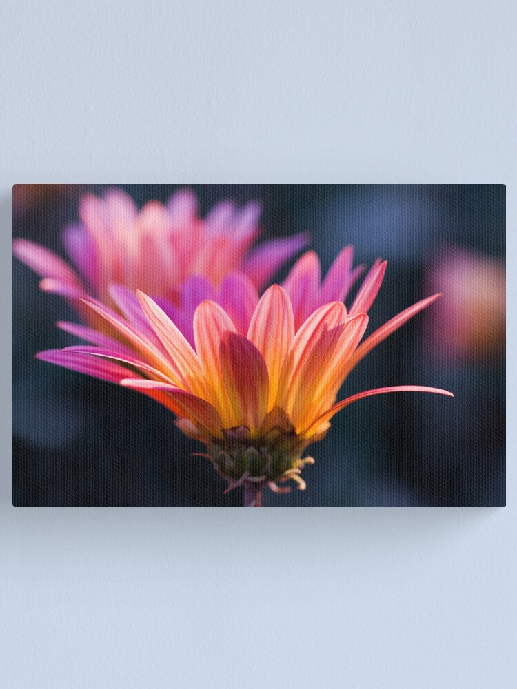 Alternate view of Pastel Peregrination Canvas Print