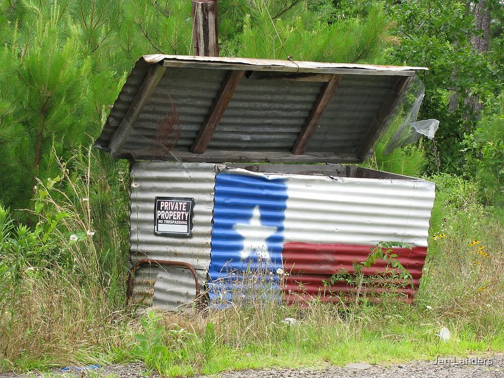 Only in Texas! by Jan Landers