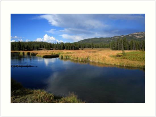 Tranquil Yellowstone by aidan  moran