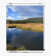 Tranquil Yellowstone iPad Case/Skin
