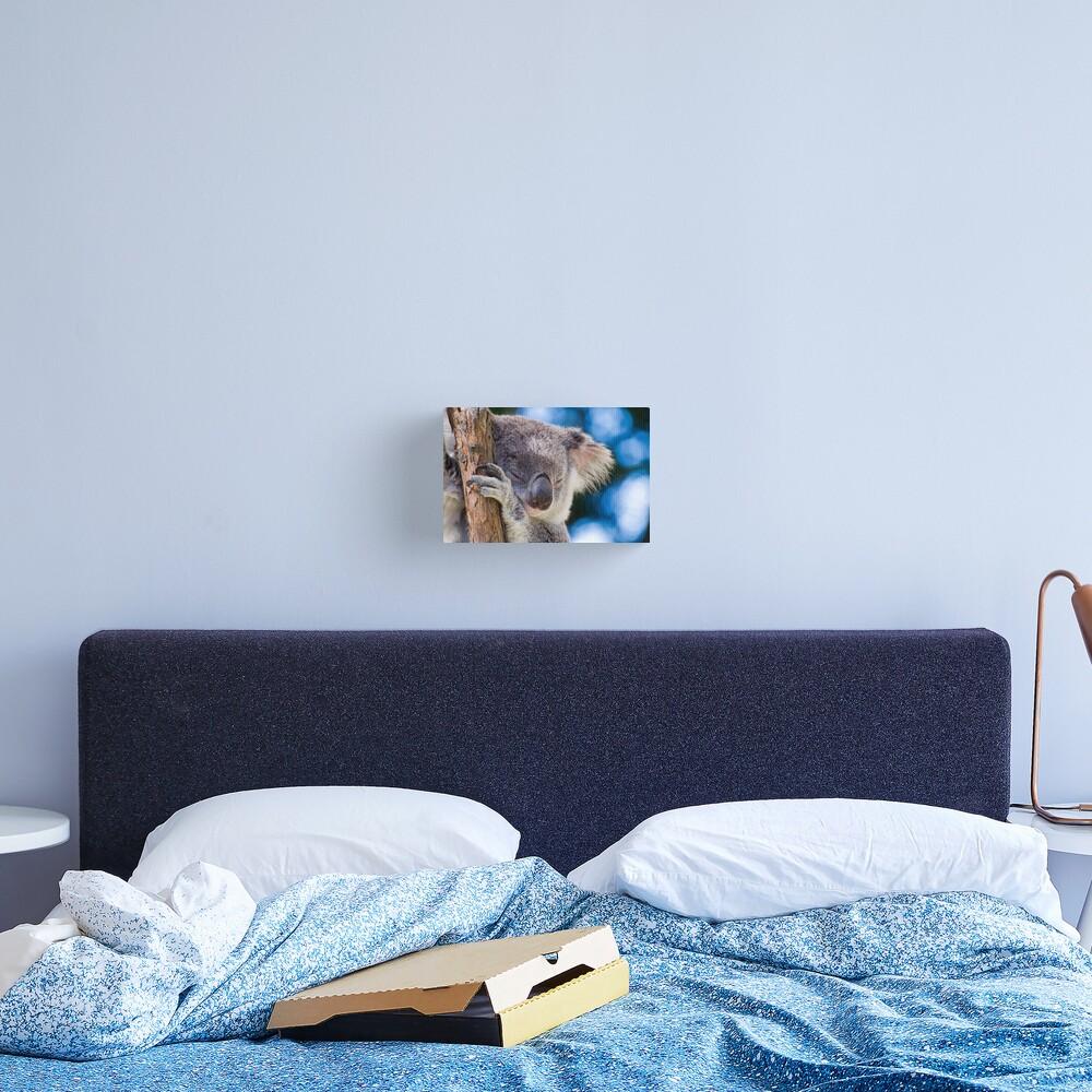 Snugglepot Canvas Print