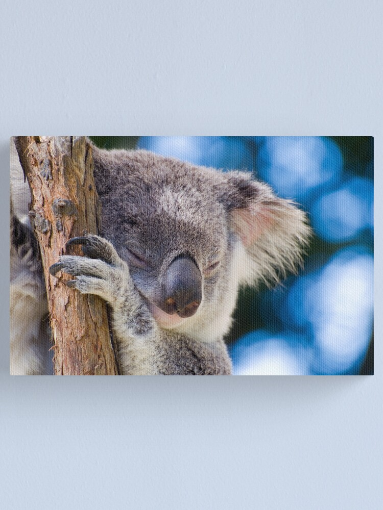 Alternate view of Snugglepot Canvas Print