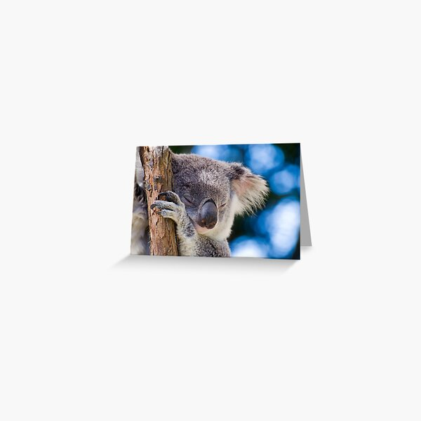 Snugglepot Greeting Card
